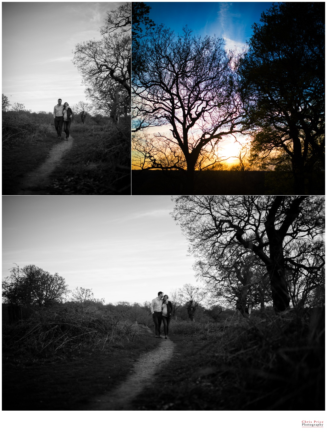 Engagement Shoot Richmond Park, Wedding Photography London, Pre-Wed Shoot Richmond Park , West Wales Wedding Photography, London Wedding Photographer